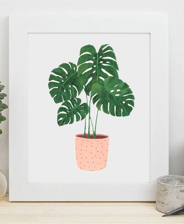 Decor_Monstera_10