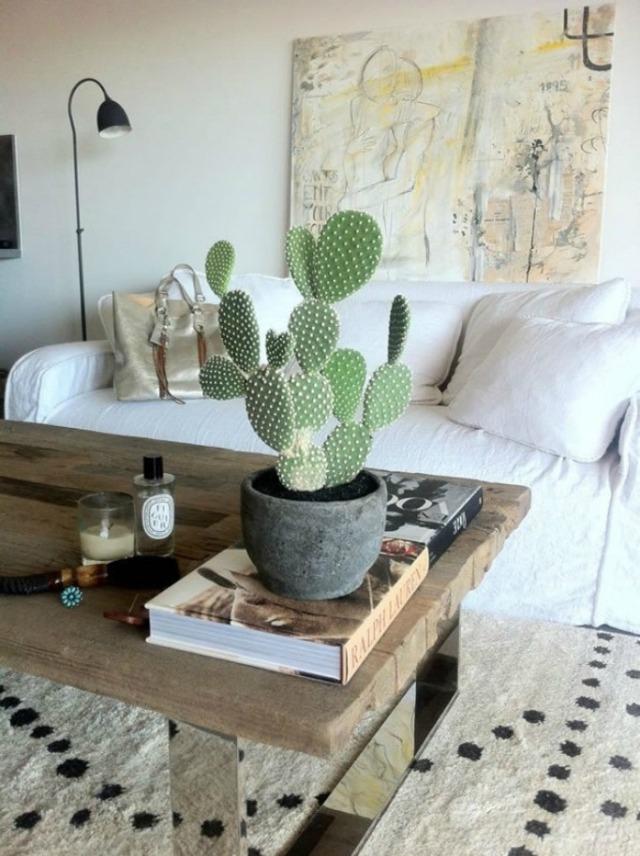 cactus_decor_10